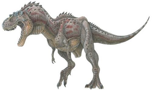 Albertosaurus sarcophagus dinosaur planet dinosaur - Liste des dinosaures carnivores ...