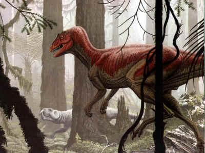 http://planetdi.startlogic.com/dinosaur_list/images/herrerasaurus.jpg