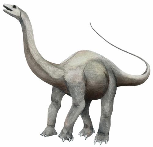 Qinlingosaurus luonanensis Dinosaur - Herbivore Dinosaurs - Planet ...